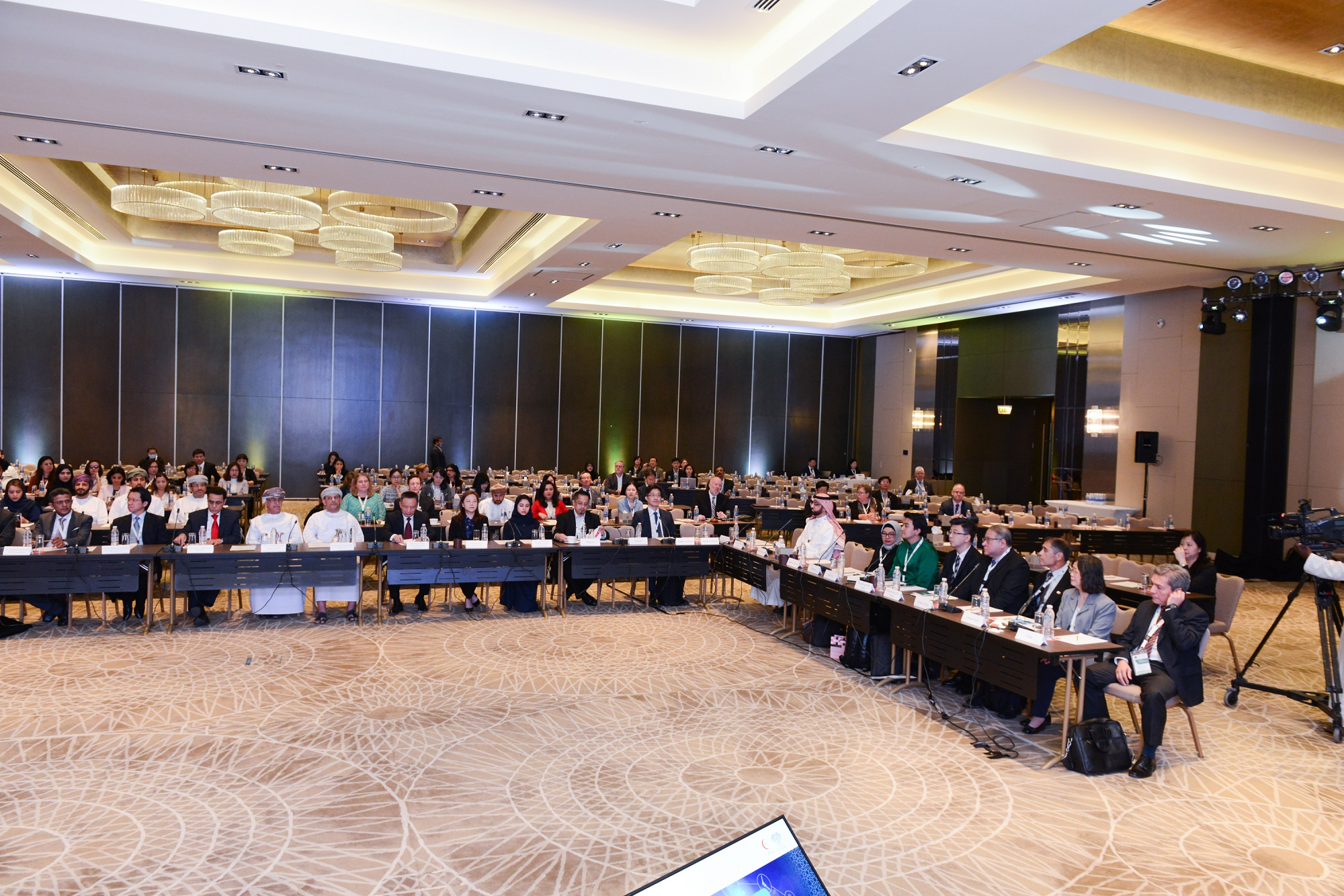 24th AHWP Annual Meeting Photos, Muscat, Oman 2019